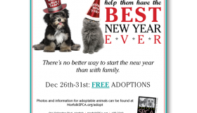 Norfolk SPCA Best New Year Ever